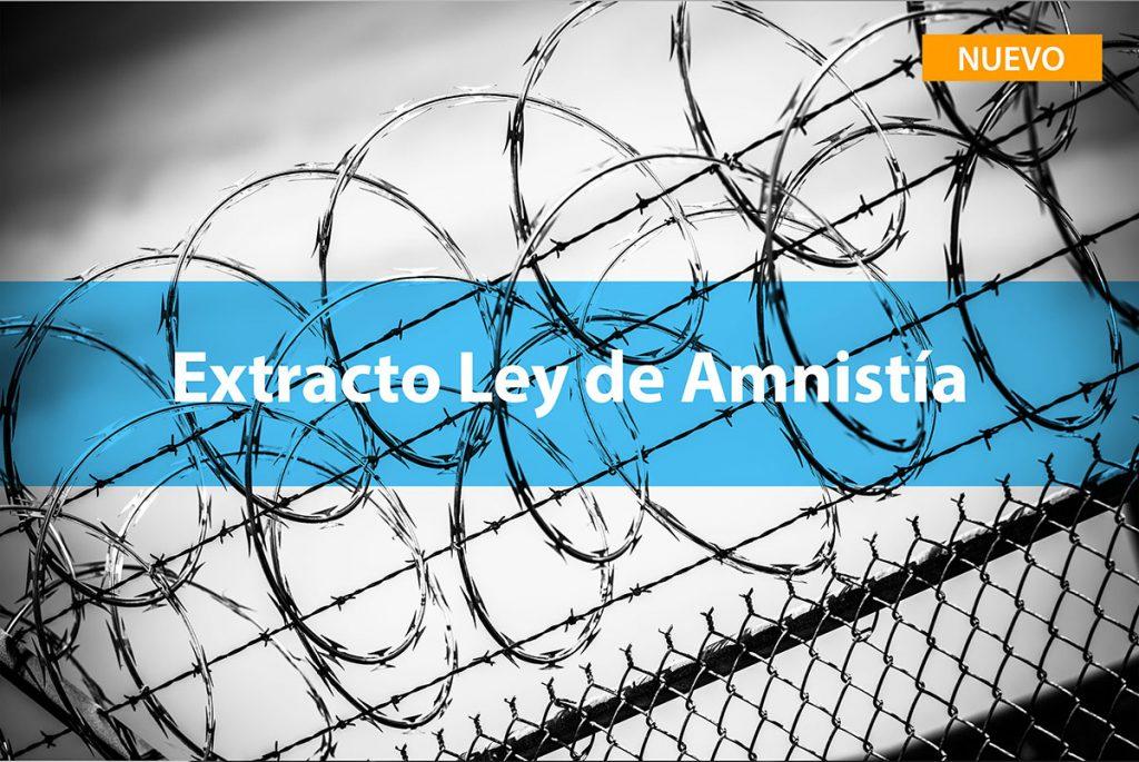 Extracto Ley de Amnistía